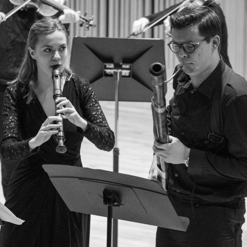 baroque orchestra concert jan 2019-1130804